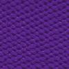 Purple Elastic