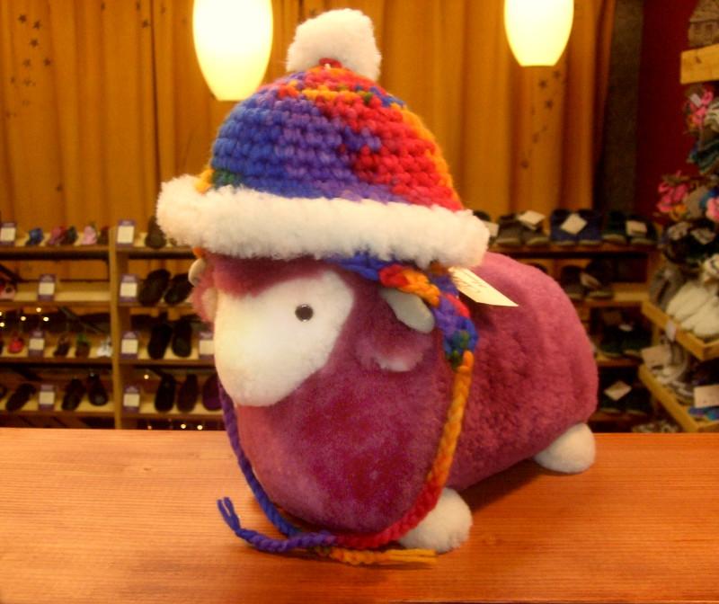 Sheep in Padraig Hat