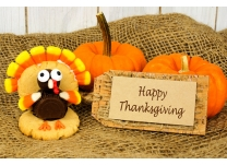 Happy Thanksgiving! Holiday Shopping Tips and Ideas from the Elves