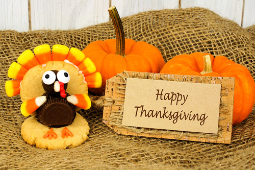 Happy Thanksgiving! Turkey Shoes and Small Business