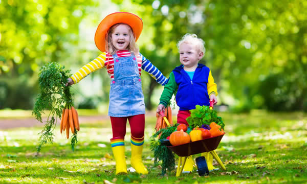 Kids w/ Wheelbarrow of Veggies